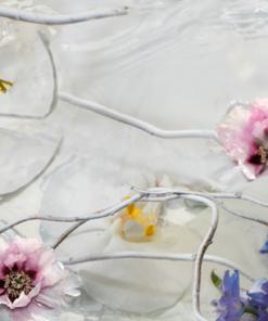 Collectie bloemige Parfums