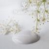 Warm Cream paint drop 600x600px