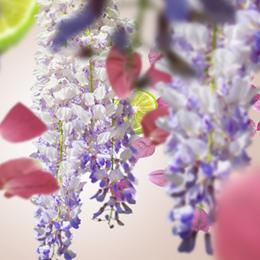 bouquet-liberty-260×260